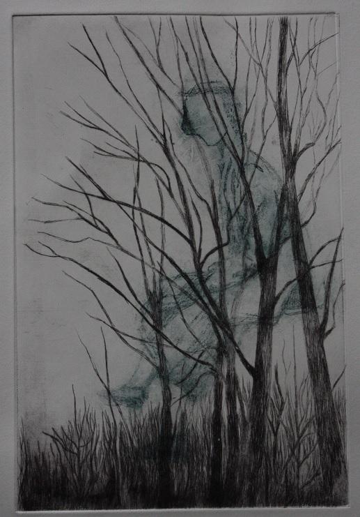... et les arbres 2 ...