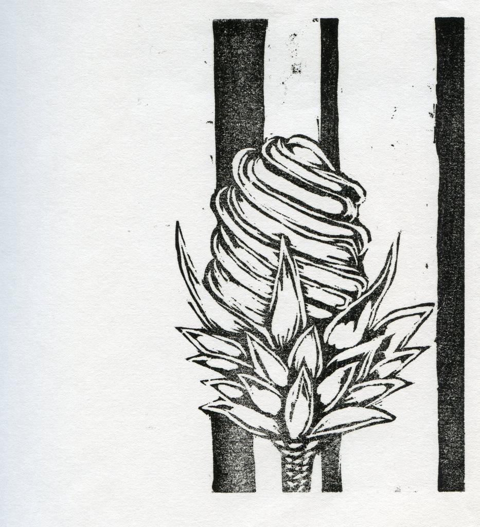 Flora 01